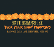 nottinghamshire pumpkins event.png