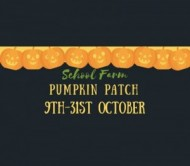 Pick your own Pumpkins at School Farm Pumpkin Patch event.jpg