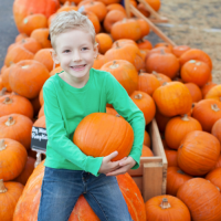 NORTH NOTTS HALF TERM & HALLOWEEN EVENTS GUIDE 2020