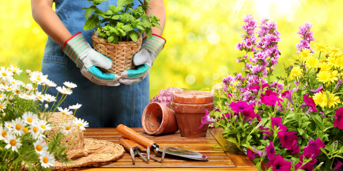 Horticulture & Floristry